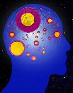 cerveau compétences